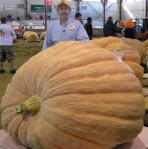 world-record-pumpkin
